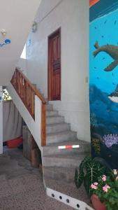 Casa de Celeste, Panziók  Puerto Baquerizo Moreno - big - 5
