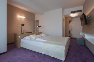 City Park Hotel, Hotely  Skopje - big - 53