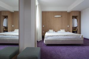 City Park Hotel, Hotely  Skopje - big - 29