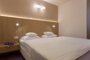 City Park Hotel, Hotely  Skopje - big - 17