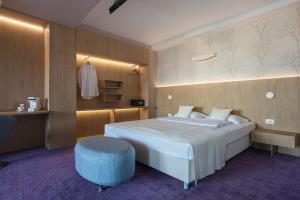 City Park Hotel, Hotely  Skopje - big - 45