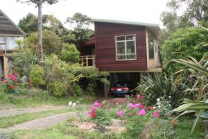 Accommodation in Bethells Beach
