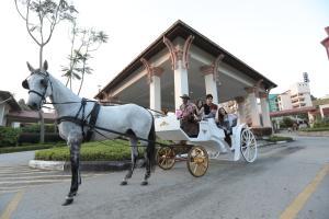 Caribbean Bay Resort @ Bukit Gambang Resort City, Resorts  Gambang - big - 22