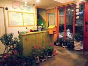 Hostels und Jugendherbergen - Blue Backpackers Hostel