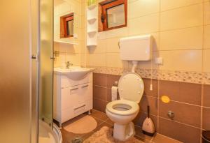 Apartments Josipovic, Appartamenti  Zlatibor - big - 11
