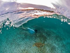 Secrets Akumal Riviera Maya All Inclusive-Adults Only, Resorts  Akumal - big - 65