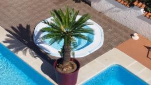 Hotel Splendid, Hotely  Diano Marina - big - 31