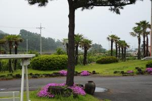 Jeju Feel House, Penziony  Čedžu - big - 68