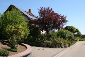 Ferienwohnung Pimer - Annweiler am Trifels