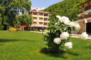 Hotel Delta, Огняново (Благоевградская область)