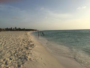 Jardines del Mar, Apartmány  Palm-Eagle Beach - big - 32