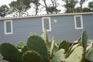 Mobile Home Sunset, Üdülőközpontok  Biograd na Moru - big - 114