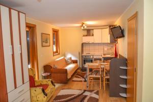 Apartments Josipovic, Appartamenti  Zlatibor - big - 32