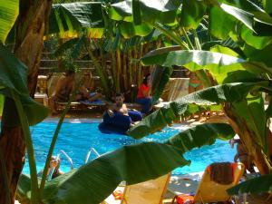 Paradise Lost Hotel-Apartments Argolida Greece