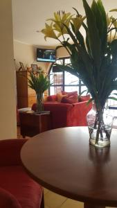 Casa Echavarria Boutique Hotel, Hotel  San José - big - 34