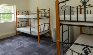 Blue Mountains Backpacker Hostel, Hostely  Katoomba - big - 99