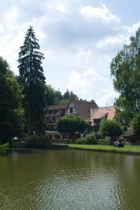 Auberge d'Imsthal, Hotely  La Petite-Pierre - big - 1