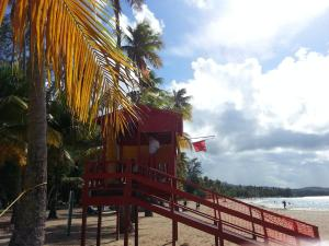 Ocean View Suites Luquillo