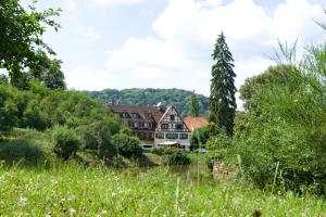 Auberge d'Imsthal, Hotely  La Petite-Pierre - big - 27