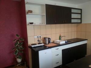 New Airport Apartments, Apartments  Belgrade - big - 83