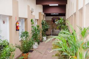 Ciudad de Alcala, Отели  Алькала-де-Энарес - big - 46