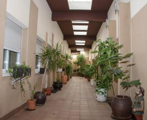 Ciudad de Alcala, Отели  Алькала-де-Энарес - big - 7