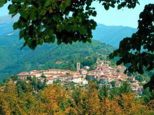Casa Il Faggio, Дома для отпуска  Coreglia Antelminelli - big - 24