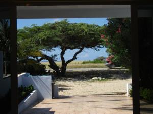 Malmok Ocean View, Apartmanok  Palm-Eagle Beach - big - 3