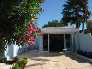 Malmok Ocean View, Ferienwohnungen - Palm/Eagle Beach