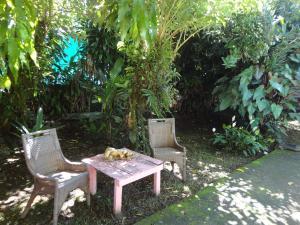 Hostel Casa Chirripo, Guest houses  Herradura - big - 58