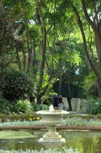 Quinta da Bela Vista (28 of 63)
