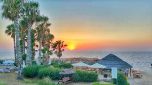 Cynthiana Beach Hotel (14 of 66)