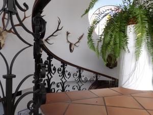 Hotel Palacio Doñana (25 of 47)