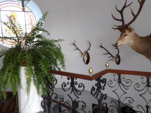 Hotel Palacio Doñana (9 of 47)