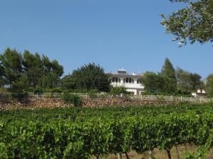 Auberges de jeunesse - B&B Villa Maria