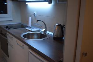 Apartment Studio Marko, Appartamenti  Belgrado - big - 11