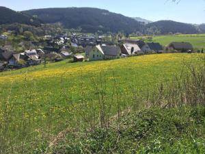 Jakobs Hütte, Dovolenkové domy  Bad Berleburg - big - 21