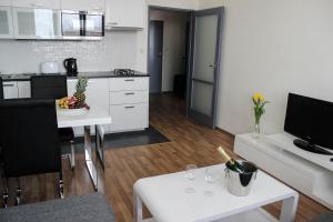 Apartment Tomino II - Brno