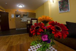 Apartamenty Convallis