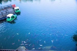 Thanalagoon Resort, Rezorty  Mu Si - big - 25