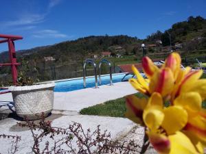 Casa D`Auleira, Farm stays  Ponte da Barca - big - 68