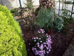 Casa Jardín de la Plata, Apartmanok  Baños de Montemayor - big - 47