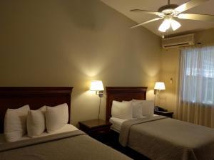 Hotel El Almendro, Szállodák  Managua - big - 47