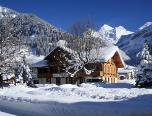 Hotel Alpina - Kandersteg