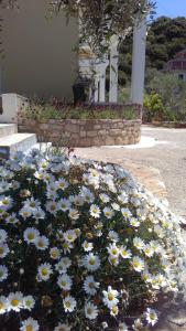Guest House Solive, Penziony  Himare - big - 14