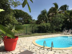 Villas COCO - CARAIBES - LES PALMIERS -HAMAK photos