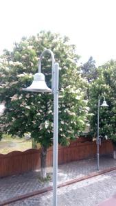 California Guest House, Penzióny  Gori - big - 19