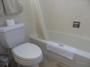 Bristlecone Motel, Motels  Ely - big - 33