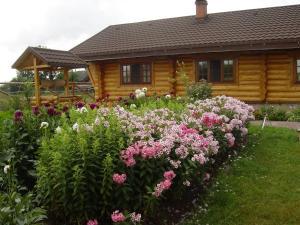 House near the lake - Lyubilki