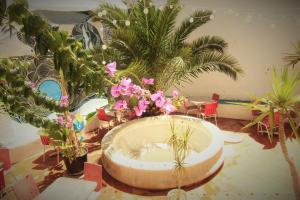 Hostel The White Butterfly - Portimão